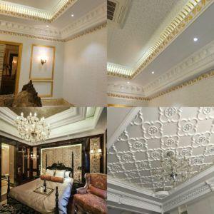 82569# Afgietsel van het Plafond van het Ontwerp van Pu China het Nieuwe Sier Materiële