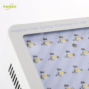 LED de alta potencia de la luz de la planta con 300W 60PC Chips paralos sistemas de cultivo hidropónico