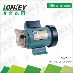 260W Household Automatic Booster Pump