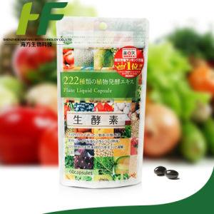 De Japanse Capsule van het Enzym bevat 222 Natuurlijke Korrels van het Fruit van de Installatie