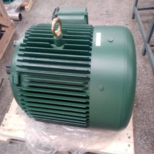 Motore asincrono a tre fasi di serie Ylf2 per la torre di raffreddamento