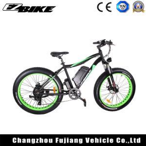 Energía verde Electric bicicleta de montaña con un alto rendimiento E BICICLETA