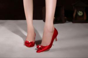 Nuevo estilo de moda vestidos damas de Tacón zapatos de boda