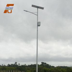 太陽電池パネルの太陽電池が付いている太陽庭の街灯