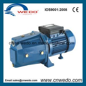 De Binnenlandse Elektrische StraalPomp van uitstekende kwaliteit van het Water (JET-60P)