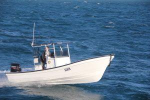 Boot 7.6m van Panga van de Vissersboot van de Glasvezel van Liya 25feet