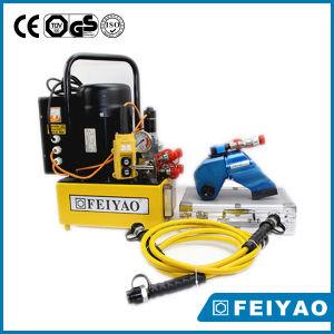 Feiyao hidráulico de doble efecto de la marca de la bomba eléctrica (FY-ER)