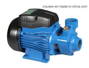 전문가에 의하여 주문을 받아서 만들어지는 고압 물 와동 원심 펌프