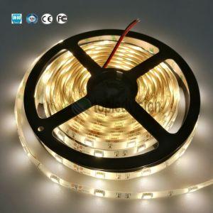 Alto Brilho 5050 Fita LED SMD Luz com TUV marcação