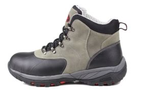 Rubber Outsole (SN2008)를 가진 시멘트를 바르는 Safety Shoes