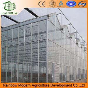 Хорошее качество Венло Тип стекла для сельского хозяйства/Poultrys выбросов парниковых газов