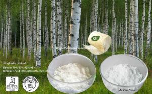 Extrato de casca de bétula /Betulina /Ácido Betulinic