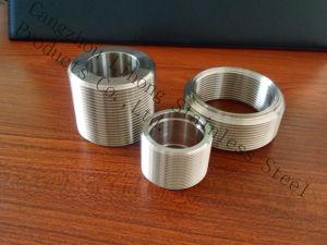 Capezzolo del filetto dell'accessorio per tubi dell'acciaio inossidabile DIN2999 dal tubo