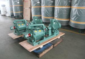 Las bombas de anillo líquido utilizado para la Industria Textil del Proceso de secado al vacío