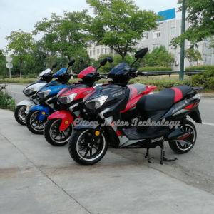 1000W 1500W Titan Unico Panamá Cuba 130/60/13 motocicleta eléctrica de los neumáticos (Fs-Shark)