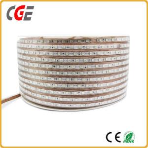 SMD2835 60LEDs 14.4W 24V 3000K LED Beleuchtung des Streifen-Licht-heißer Verkaufs-hohe Lumen-LED
