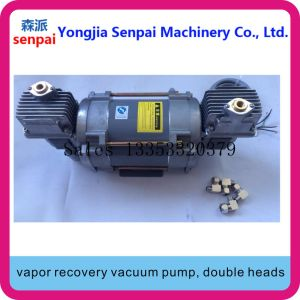 Pulsometro con acuto della pompa di ripristino del vapore delle Doppio-Teste 220V/380V
