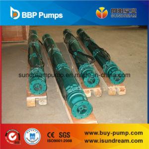 Bomba de Taça de poços verticais com certificação CE