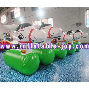Надувные спортивные игры/пневматического прижимного ролика воды/надувной мяч можно дойти пешком
