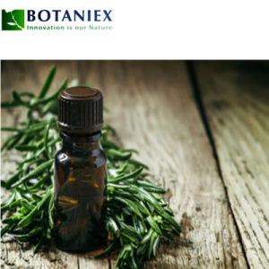 100% Pure et naturelle de l'huile de parfum d'Huile Essentielle de Romarin L pour l'Aromathérapie / Spa / Massage aux huiles de romarin