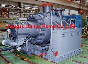 La chaudière d'alimentation à plusieurs degrés horizontal de la pompe à eau