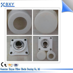 Alojamento termoplástico de PBT com rolamento de aço inoxidável, Ssucf Ssucp, Ssuct Ssucfl,