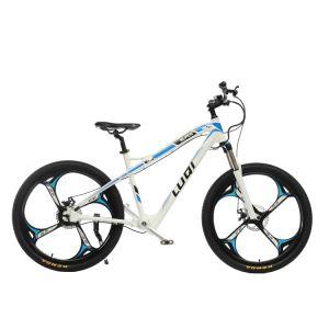 Bici elettrica della montagna senza catena del cavaliere di velocità con l'azionamento di asta cilindrica e la forcella dell'aria