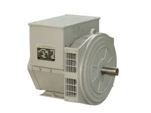 31.3 kVA alternador trifásico sin escobillas (JDG184G)