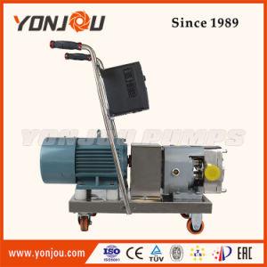 Pompa volumetrica igienica del positivo del commestibile della pompa del rotore della pompa del lobo dell'acciaio inossidabile di Lq3a per liquido di grande viscosità