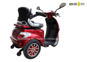 Mobilidade eléctrica Scooter 3 Rodas Triciclo Eléctrico Scooter de 1 kw