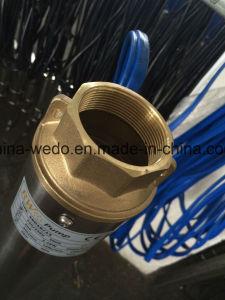 4SD de elektrische Pomp Met duikvermogen van het Roestvrij staal, Diepe goed Pomp