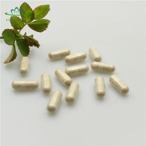 Proveedor de GMP Multi-Used ecológica la betaína HCl cápsulas
