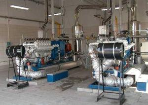 Centrale elettrica elettrica di Mw del generatore del diesel/gas di marca di Googol