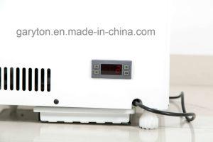 De koel Showcase van de Vertoning van de Showcase (grt-lc-60B) voor Winkel