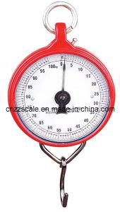 200kg bilancia meccanica (ZZG-104)