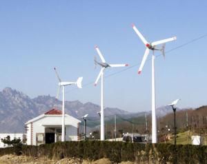 600w-2000W Gerador de Energia Eólica
