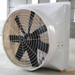 O cone de PRFV Bangchi ventilador para Avicultura House