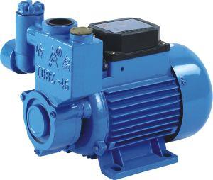 Clarified Pump (1DB-35)