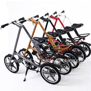16 인치 싼 가격을%s 가진 접히는 도시 전기 자전거