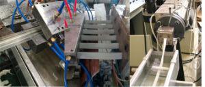 기계를 만드는 연약한 유연한 PVC/TPU 밀봉 단면도 지구
