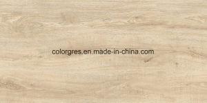 Плитка пола большой плитки проекта размера 450*900mm Matt поверхностной деревенская