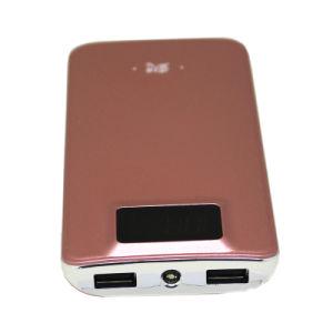 Cargador portátil de alta capacidad del banco de potencia con la pantalla 10000mAh (Y10).