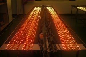 RGB indirizzabile 60-LED Strip, 5V, Ws21812b LED Digital Strip