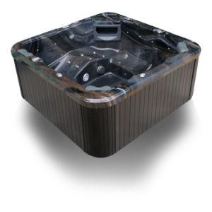 A200 de l'acrylique bain à remous extérieur avec la CE Ceritification