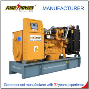 70kw de Generator van het Aardgas van het Gebruik van het huis met Ce- Certificaat 50Hz