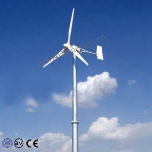 Простота установки 1000W 12V 24V 48V ветровой энергии генератора (1 квт)