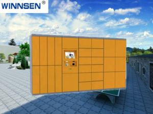 De elektronische Slimme Logistische Slimme Elektronische Kast van de Kast van de Levering