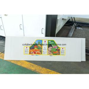 Der vier Farben-Karton-der Kasten, der Drucken-Maschine mit Slotter herstellt und sterben Scherblock