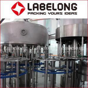 macchina di rifornimento automatica dell'acqua potabile della bottiglia dell'animale domestico 700bph 4L/5L