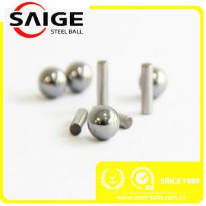 SUS304 SS316 316L SS302 Bille en acier inoxydable